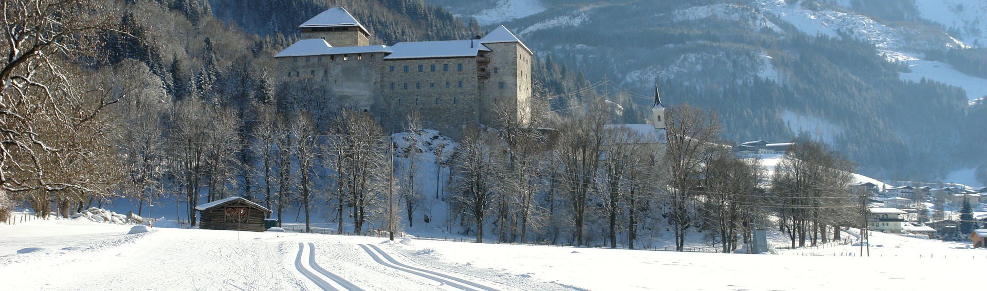 Winter landscape with a castle in the background